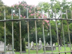 oak-hill-cemetery-068